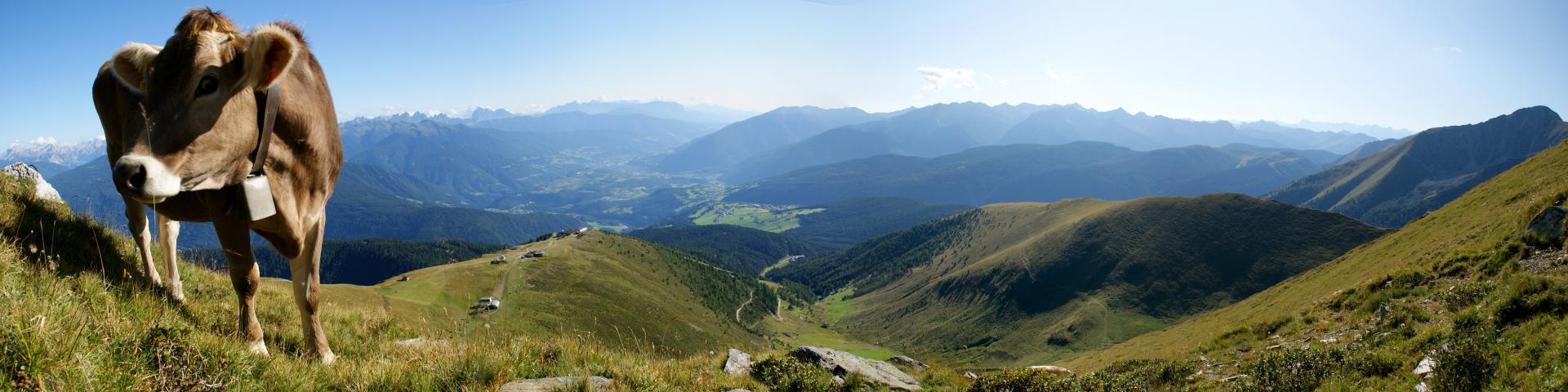 panorama_gitschberg.jpg